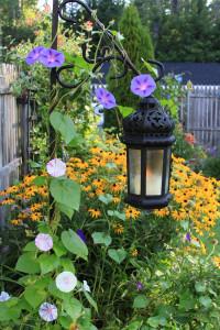 Lantern in August